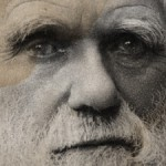 close up of Charles Darwin's portrait